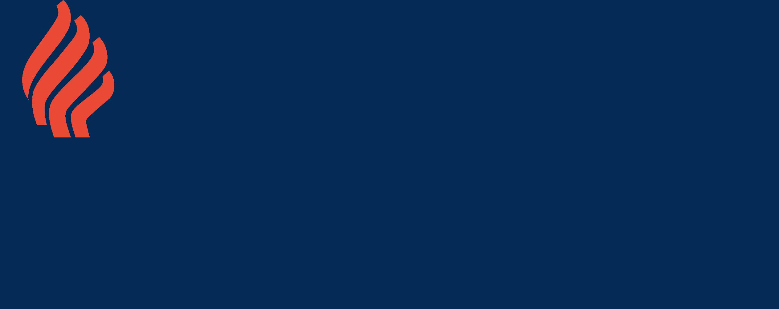University of Jyväskylä - Executive MBA